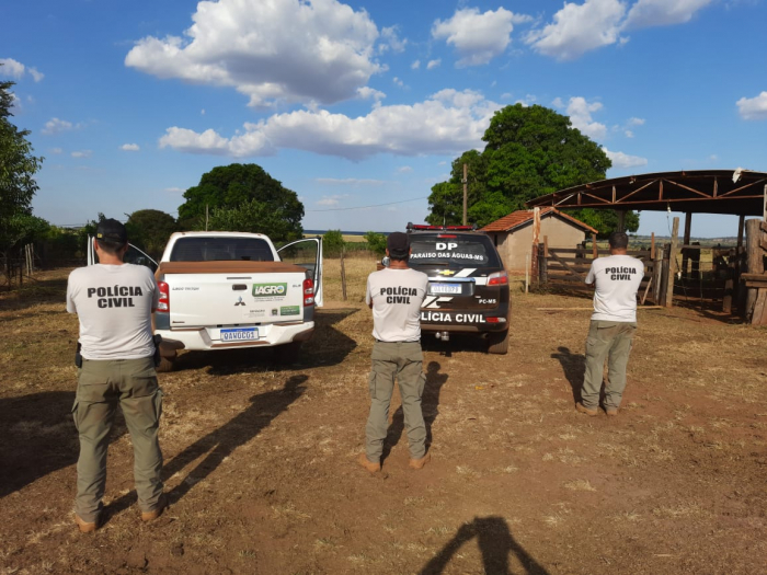 Investigações iniciadas em Paraíso das Águas desencadeia Operação contra furto, roubo e receptação de gado e em defesa de atividades rurais